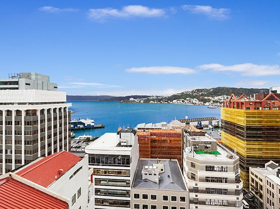 view-555x416-lambtonquay-wellington.jpg