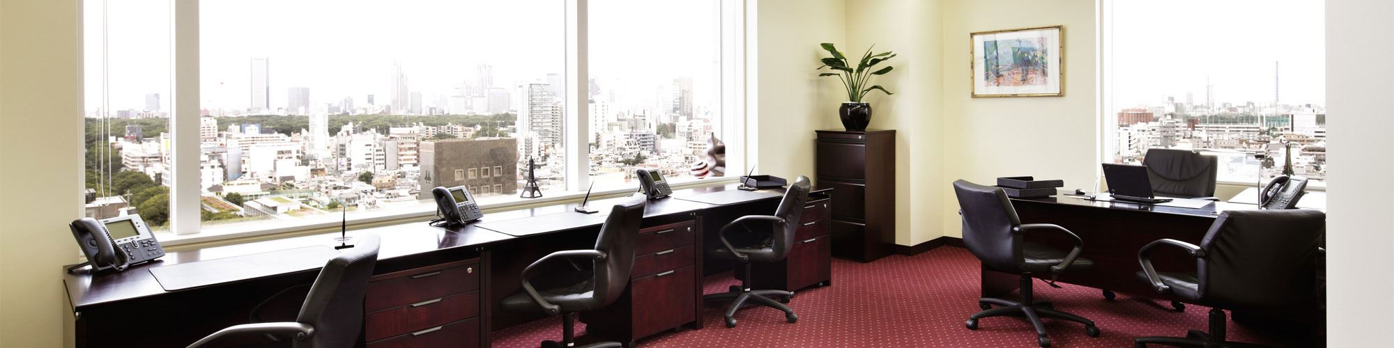 Aoyama Palacio Tower Office Suite Window View